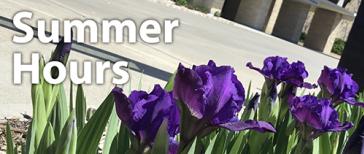 Summer Hours thumbnail