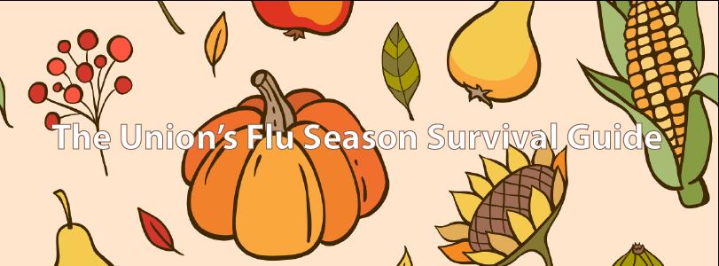 Flu Season Graphic