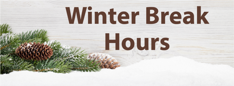 """A pale wood-textured background with snow, a pine tree branch and the text """"Winter Break Hours."""""""