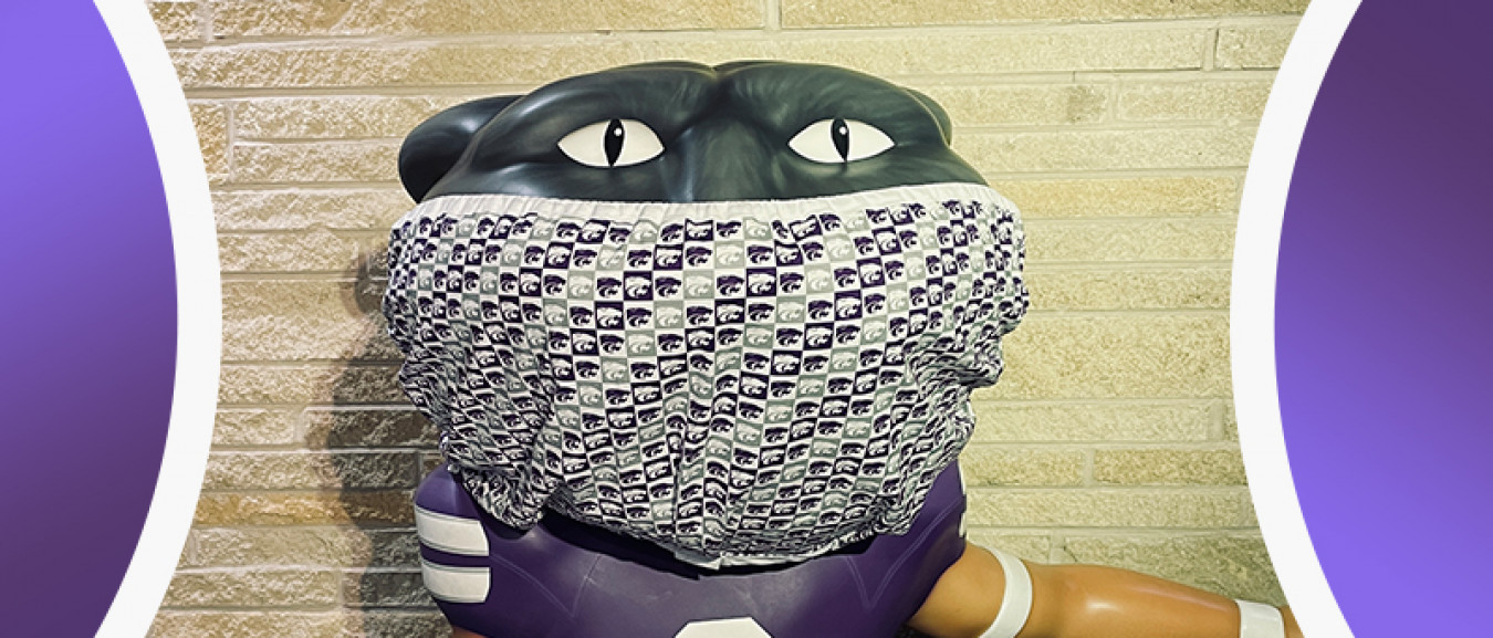 Willie wearing a mask